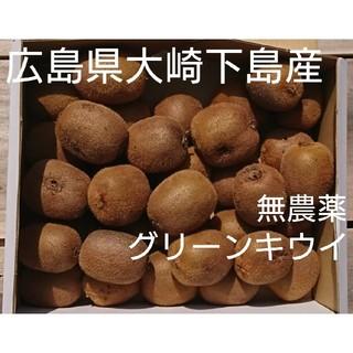 dolce takuya様専用 グリーンキウイ5キロ(フルーツ)