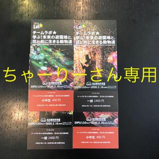 チームラボ入場券 名古屋市科学館(美術館/博物館)