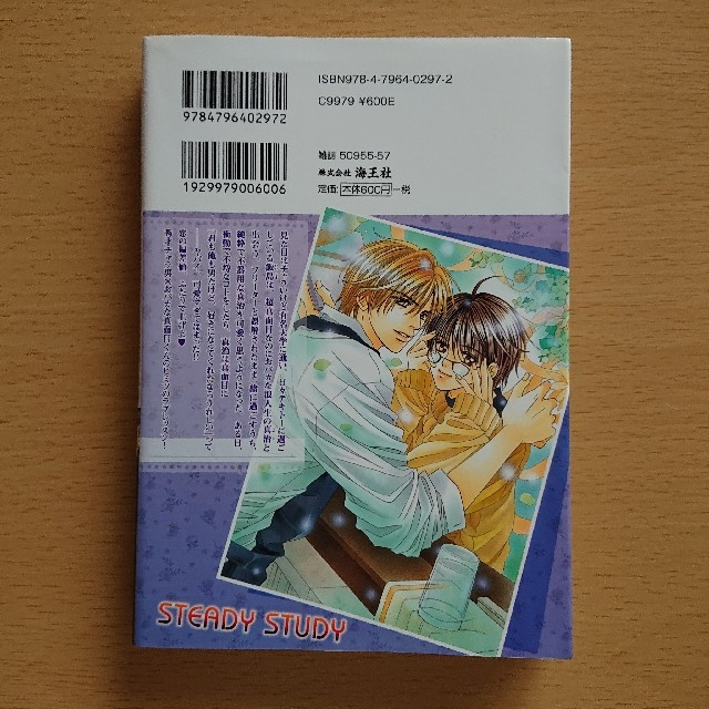 ステディ-スタディ エンタメ/ホビーの漫画(ボーイズラブ(BL))の商品写真