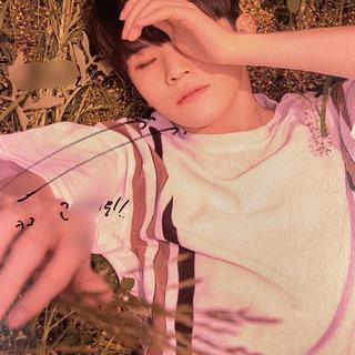 セブンティーン(SEVENTEEN)のウジ サイン3 SEVENTEEN(K-POP/アジア)