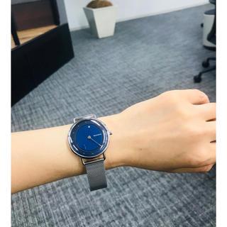 SKAGEN - スカーゲン 腕時計 Skagen