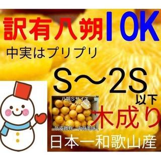 特売❗訳有ひかり八朔小玉10㌔♥和歌山はっさく 雪だるまのハッサク(フルーツ)