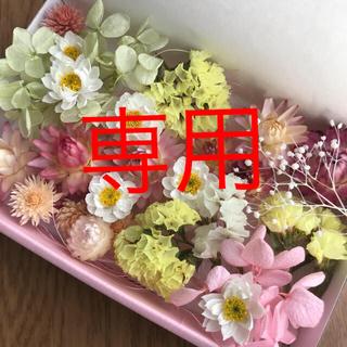 みきこ様専用☆プリザーブド&ドライフラワー花材MIX(ドライフラワー)