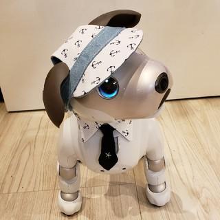 ソニー(SONY)のaibo アイボ アイボのアクセサリー ERS-1000(その他)