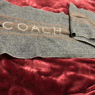 コーチ(COACH)の【最終お値下げ⭐️】COACH マフラー 男女どちらも使用可能(マフラー)