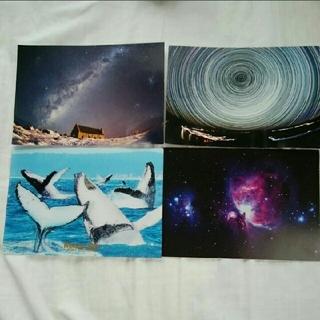 ニュージーランド、オーストラリア バイロンベイ ポストカード(写真/ポストカード)