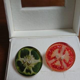 ♦️タイムセール♦️おくら&ミニトマトのピアス(ピアス)