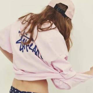 STUSSY - ステューシー ピンクTシャツ