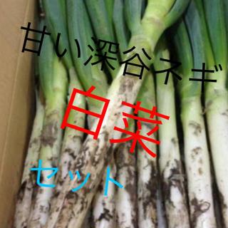無農薬栽培深谷ネギ、白菜セット約100サイズに入れちゃいます激安価格(野菜)