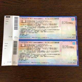 チームラボ チケット2枚 名古屋(美術館/博物館)