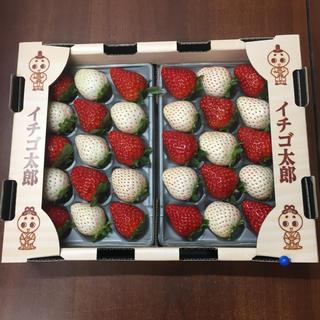 nuni様専用 奈良県産 高級苺 紅白苺3箱・古都華1箱セット(フルーツ)