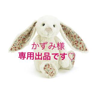カシウエア(kashwere)のかずみ様 専用出品です♡(ぬいぐるみ/人形)
