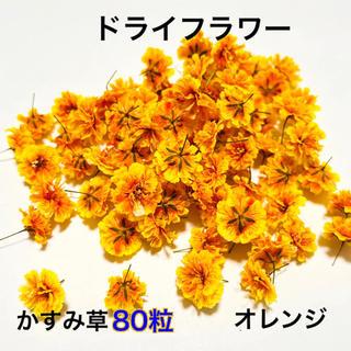 【80粒】ドライフラワー(かすみ草)オレンジ グラデーション(ドライフラワー)