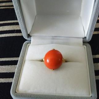 赤珊瑚のリング(リング(指輪))