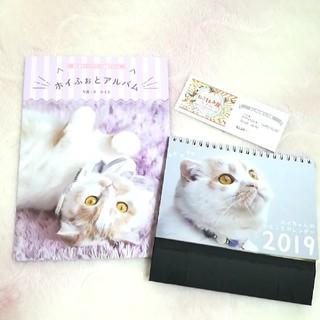 ねこ休み展 ホイふぉとアルバム ホイちゃん ホイフォトアルバム カレンダー(キャラクターグッズ)