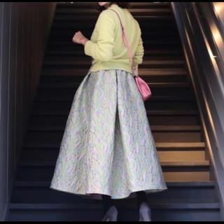 チェスティ(Chesty)のrosy Monster  dokidoki skirt(ロングスカート)