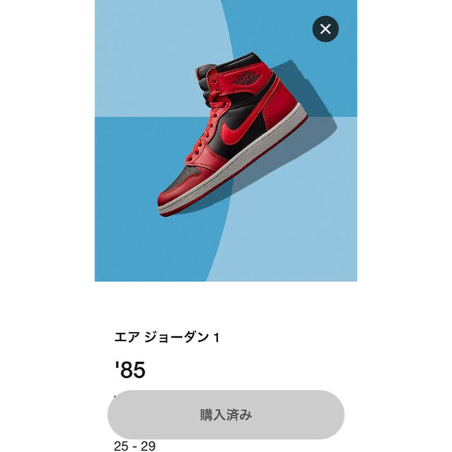 NIKE(ナイキ)のAir Jordan 1 high OG '85  メンズの靴/シューズ(スニーカー)の商品写真