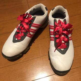adidas - ゴルフシューズ/adidas