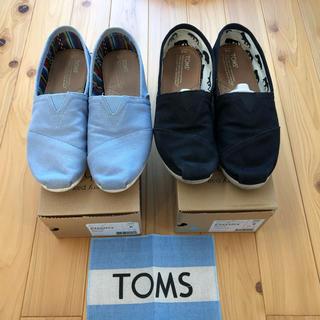TOMS - TOMS トムズ スリッポン 26 センチ 2足セット