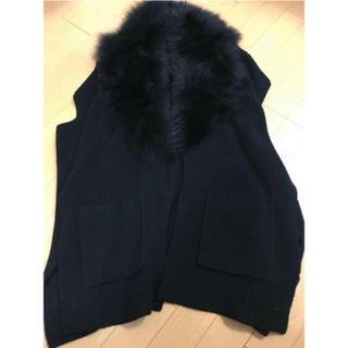 ダブルスタンダードクロージング(DOUBLE STANDARD CLOTHING)のダブルスタンダードクロージング フォックスファージレ ベスト(ニット/セーター)