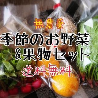 季節のお野菜&果物セット 無農薬(野菜)