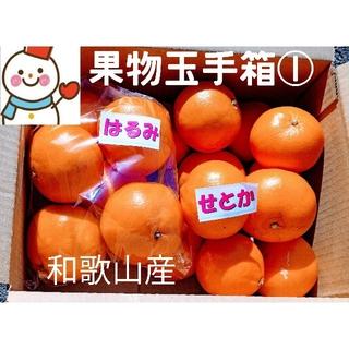 果物玉手箱①❗せとか♥はるみ♥味比べ和歌山(フルーツ)