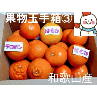 果物玉手箱③❗せとか&デコポン♥はるかオマケ和歌山(フルーツ)