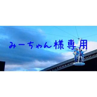 嵐落下物みーちゃん専用(アイドルグッズ)