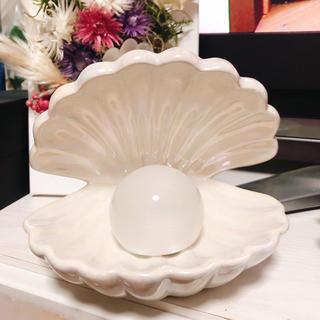 フランフラン(Francfranc)の貝殻 シェルライト(インテリア雑貨)