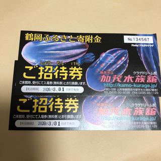 加茂水族館2枚チケット(水族館)
