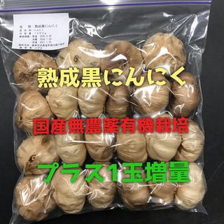 熟成黒にんにく国産無農薬有機栽培(野菜)