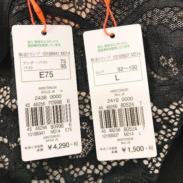 AMO'S STYLE(アモスタイル)のアモスタイル E75 L Dress ドレス ブラショーツセット  レディースの下着/アンダーウェア(ブラ&ショーツセット)の商品写真