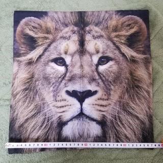 ライオン クッションカバー リアル アニマル インスタグラム人気(クッション)
