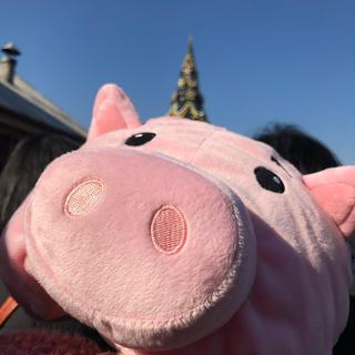豚(キャップ)