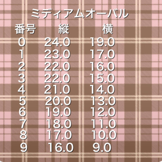 r.様 コスメ/美容のネイル(つけ爪/ネイルチップ)の商品写真