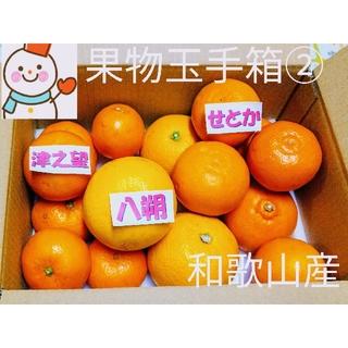 果物玉手箱②♥せとか&津之望&木成り八朔♥和歌山産雪だるま(フルーツ)