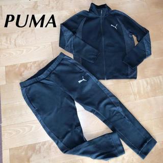 PUMA - PUMA プーマ メンズ スウェット 上L 下XL ジャージ 上下 黒