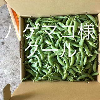 鹿児島産甘スナップエンドウ箱込み2キロ^_^クール(野菜)
