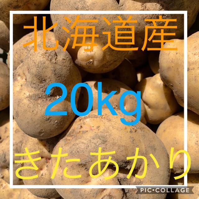 北海道産キタアカリ20kg 食品/飲料/酒の食品(野菜)の商品写真