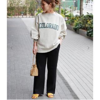 JOURNAL STANDARD - lib pants 🦓