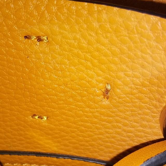 ZARA(ザラ)のZARAマスタードショルダー レディースのバッグ(ショルダーバッグ)の商品写真