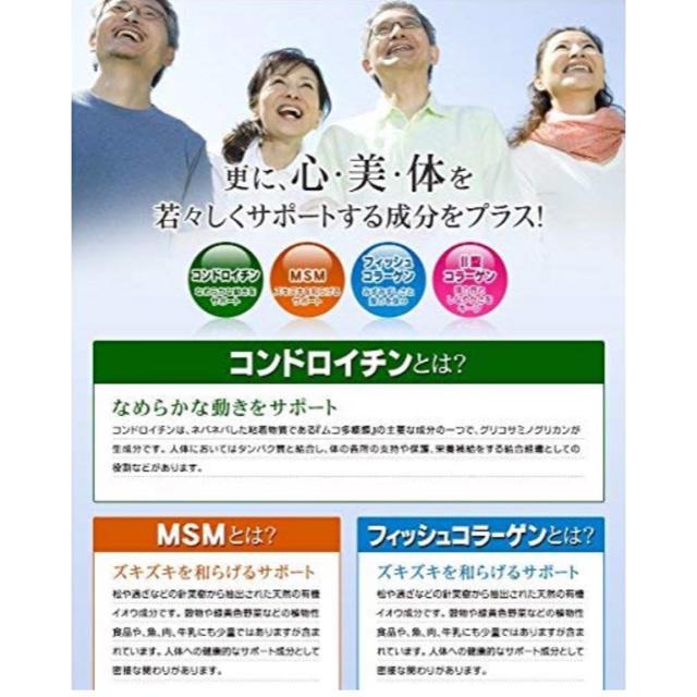 ロコモアの代替に グルコサミン&コンドロイチン&MSM 約3ヵ月分 食品/飲料/酒の健康食品(その他)の商品写真