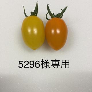 5296様 専用 イエロー、オレンジアイコ6kg(野菜)