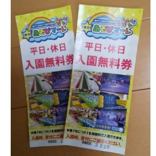 東京あそびマーレ無料チケット2枚(遊園地/テーマパーク)