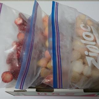 奈良県産 冷凍イチゴ 三種set(フルーツ)
