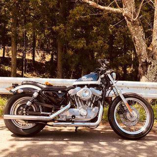 ハーレーダビッドソン(Harley Davidson)のハーレーダビットソン スポーツスター XLH883ハガー 2003年アニバーサリ(車体)
