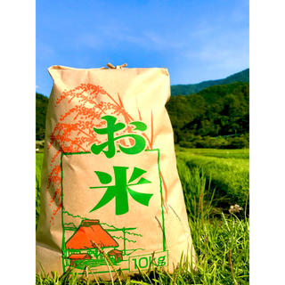【送料込】R1年産 コシヒカリ 白米 10㎏