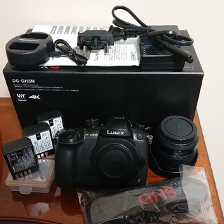 Panasonic - Panasonic LUMIX DC-GH5M 標準ズームレンズキット 送料無料