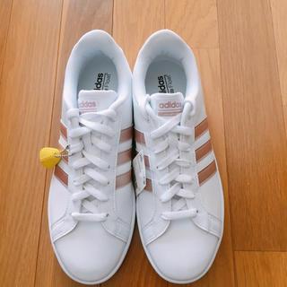 アディダス(adidas)のadidas アドバンテージレディースシューズ(スニーカー)