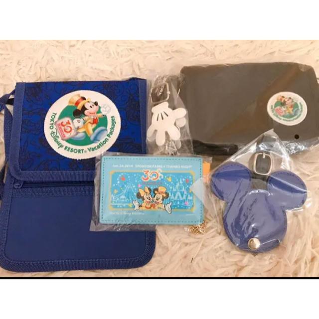 Disney(ディズニー)のディズニーリゾートバケーションパッケージ デジカメケース等計4点 エンタメ/ホビーのおもちゃ/ぬいぐるみ(キャラクターグッズ)の商品写真